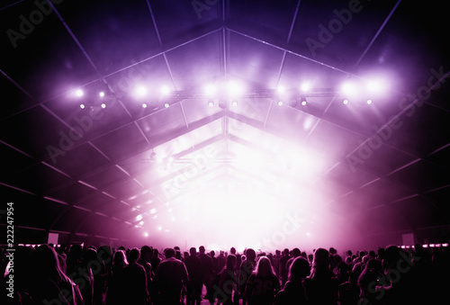 Party people at concert