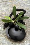 Aceite de oliva Olio di oliva Azeite                    ft314894 Castañuelas Nacchere Castanhola  - 222251961