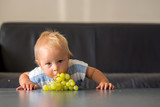 Baby boy, child, eating grape at home in living room - 222259798