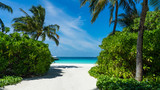 Tropical island with coconut palm trees on sandy beach. Maldives, Indian Ocean. - 222271127