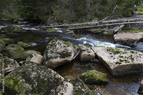 Poster Wild Landscape about Creek Kremelna, Sumava, mountains in south Czech