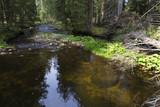 Wild Landscape about Creek Kremelna, Sumava, mountains in south Czech - 222273339