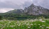 View of Mountains in Austria Salzkammergut - 222300321