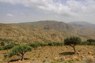 Ethiopia, desert landscape in the Tigray region
