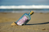 Five hundred euros in a bottle, tax haven - 222331196
