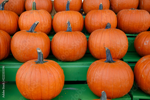 Fall pumpkins on Shelves at a Market - 222333396