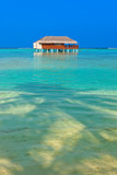 Tropical Maldives island - 222340997