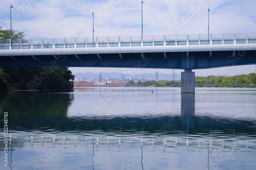 Fototapeta Nouveau pont de la Sucrerie et vue sur Lyon