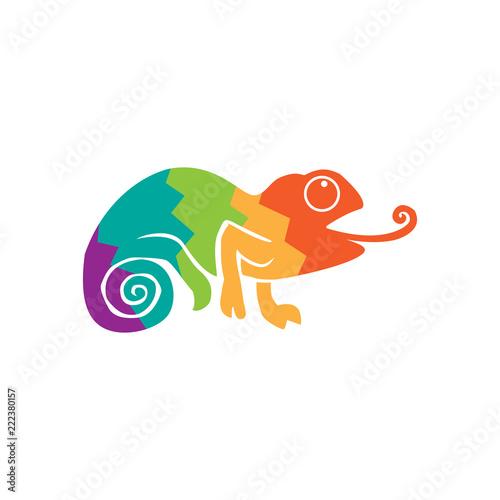 logo w kolorze kameleona