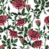 Seamless pattern with hand  drawn roses. - 222414127