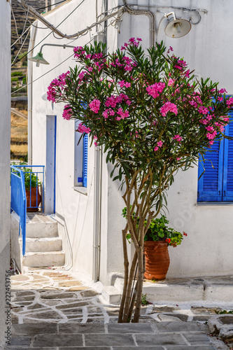Cyclades style streets and architecture in Lefkes village, Paros, Greece - 222453756
