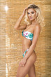 Young beautiful blonde woman in bikini. Summer look