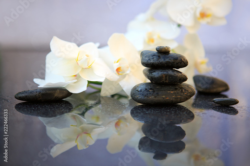 canvas print picture White orchids flowers and spa stones . Spa background.