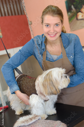 Pet groomer with dog - 222467795