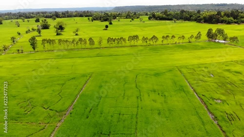 Drone shot aerial view scenic landscape of agriculture farm at countryside