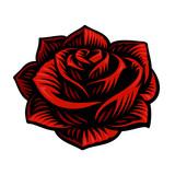 Vector illustration of rose flower - 222484154