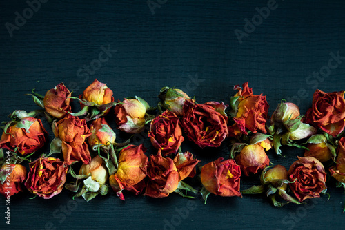 Dried red roses.