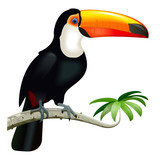 Vector Toucan with Orange Beak - 222488580
