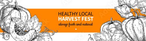 Pumpkin vector banner. Hand drawn vintage Harvest festival frame. Farm Market sketch
