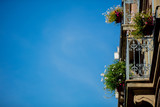 Balcony with flowers of Renaissance style building on blue sky background. - 222544185