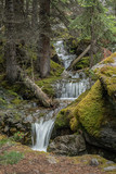 Waterfall cascading down a mossy mountainside in Canada's Lake O'Hara National Park