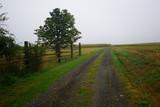Austria landscape of rural farm steads - 222562392