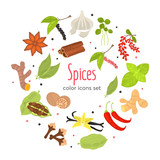 Different spices color flat icons set - 222570533