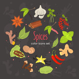 Different spices color flat icons set - 222570534