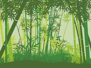 Bamboo forest scene © AnnaPa