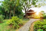 Tropical park landscape - 222574935
