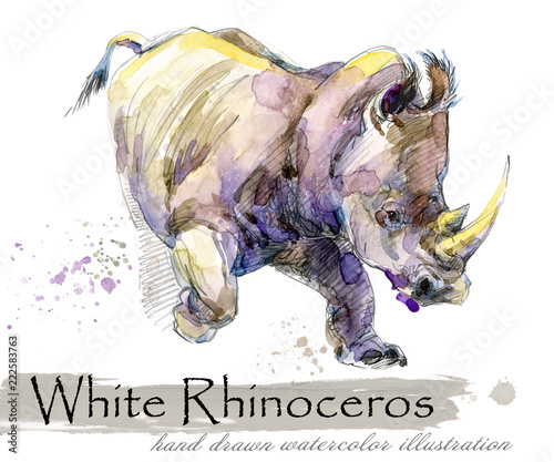 Fototapeta rhinoceros hand drawn watercolor illustration
