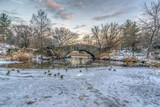 Central Park, New York City in winter