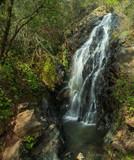 Waterfall off of Robie Point Firebreak Trail