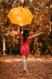 Happy Woman In Autumn Park - 222652161