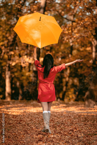 Happy Woman In Autumn Park - 222652161