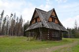 Mały drewniany domek opuszczony po pożarze lasu, Butorowy Wierch, Polska