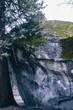 boulder in yosemite - 222672769