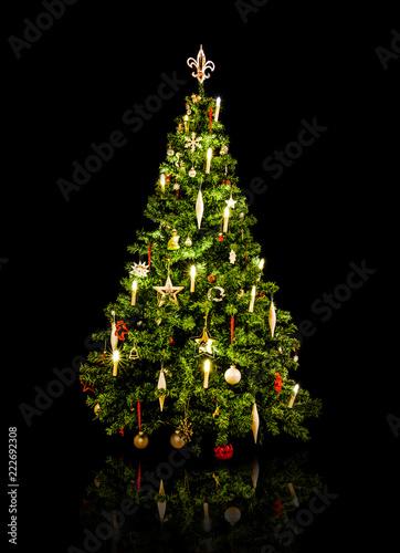 Weihnachtsbaum vor schwarzem Hintergrund