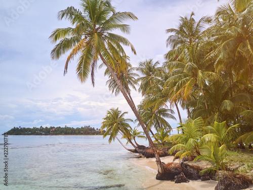 Summer vacation on exotic virgin island