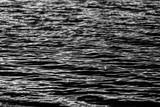 agua blanco y negro