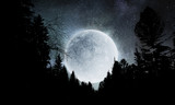 Full moon in sky - 222731148