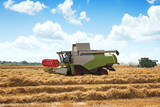 Combine Harvesting large wheat field - 222742755
