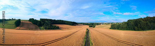 panorama rural summer landscape with a road - 222758932
