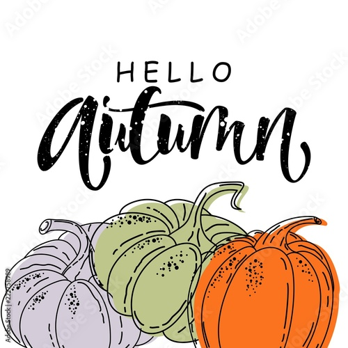 Hello Autumn time, isolated, label, pattern design words. Vector illustration of Cup and autumn elements. - 222758989