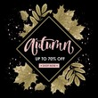 Autumn sale. Hand lettering. Postcard with autumn leaves on a beautiful background. Vector illustration.
