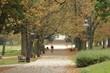 Jesienny park, starodrzew, drzewa z pieknymi kolorowymi liśćmi, szeroką parkową aleją jedzie rowerzysta