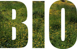 Bio 1 - 222768360