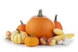 Autumn harvest on white - 222768941