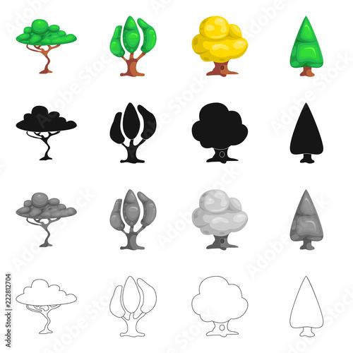 Wektorowa ilustracja drzewa i natury symbol. Set drzewa i korony akcyjna wektorowa ilustracja.