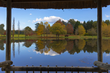 Framed view of autumn colored trees